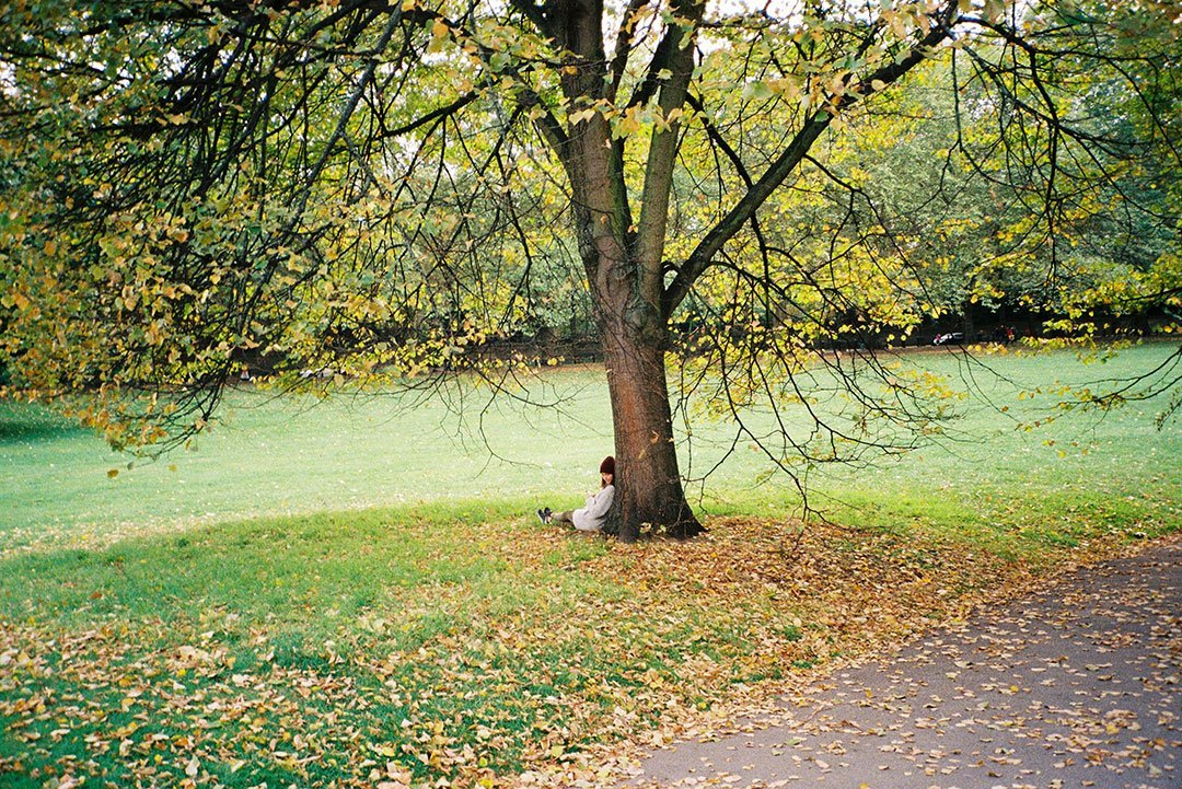 andrew tralongo film photography london park 1