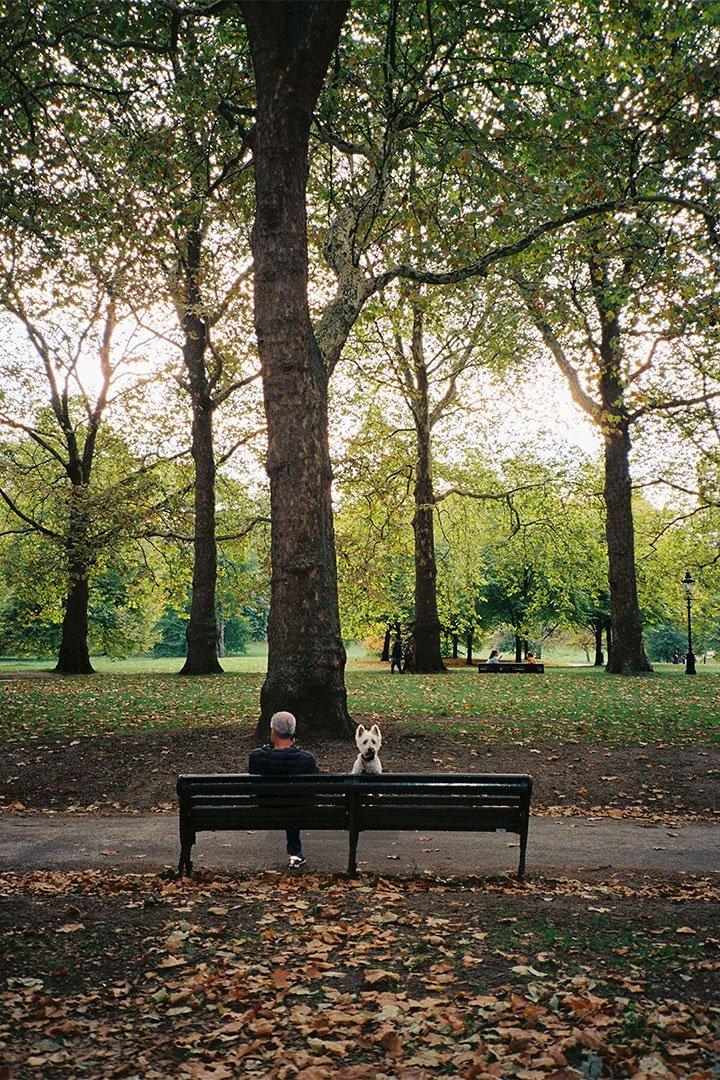 andrew tralongo film photography london park 2