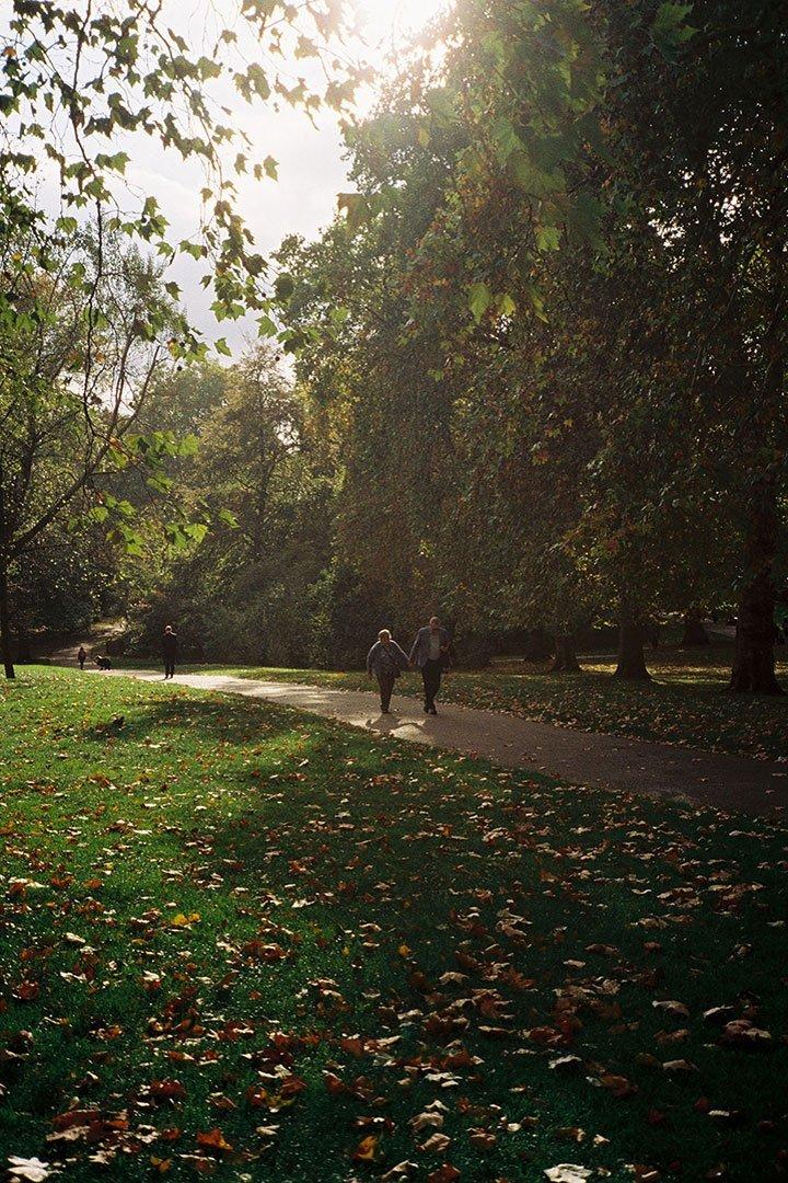 andrew tralongo film photography london park3